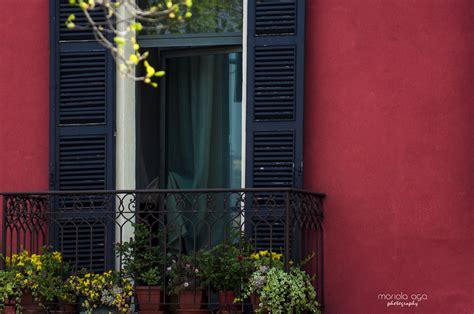 Jakie kwiaty na balkon ?